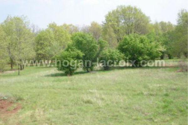 Immobilier Dordogne Vente Ref : 3796