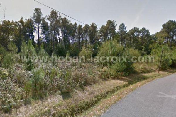 Immobilier Dordogne Vente Ref : 4618