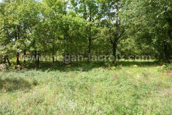 Immobilier Dordogne Vente Ref : 4883