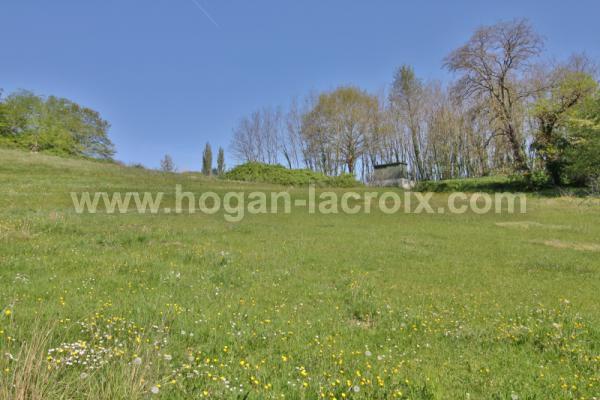 Immobilier Dordogne Vente Ref : 5341