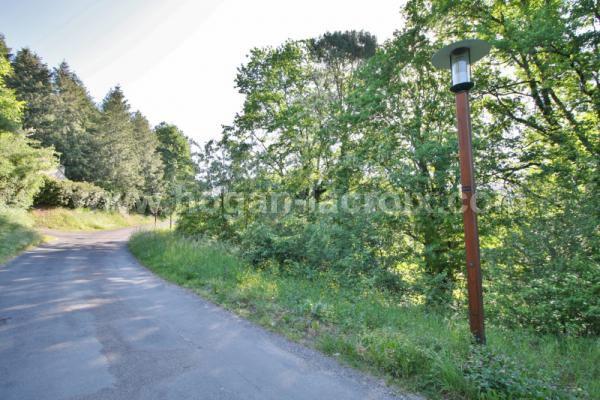 Immobilier Dordogne Vente Ref : 5375